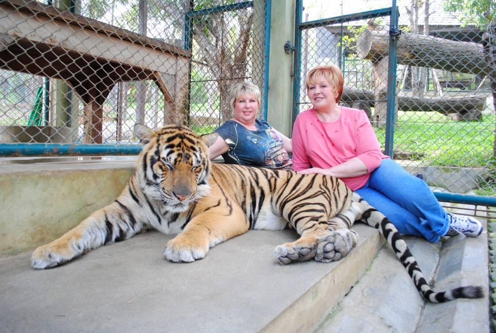 Tiger Park Thailand 098
